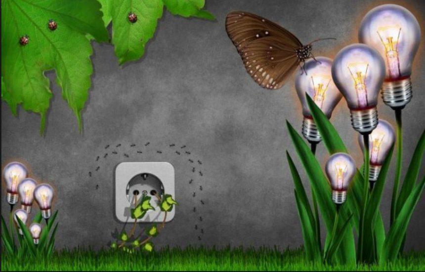 36. Enerji Verimliliği Haftası (9-15 Ocak)